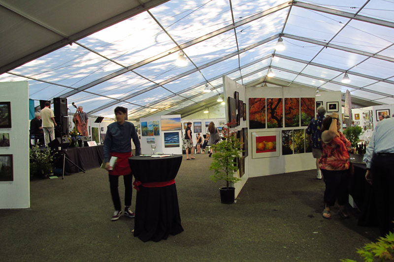 2017 Open show - Lake Oswego Festival of the Arts